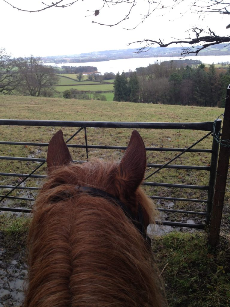 Horses ears with lake, gate and fields in the background