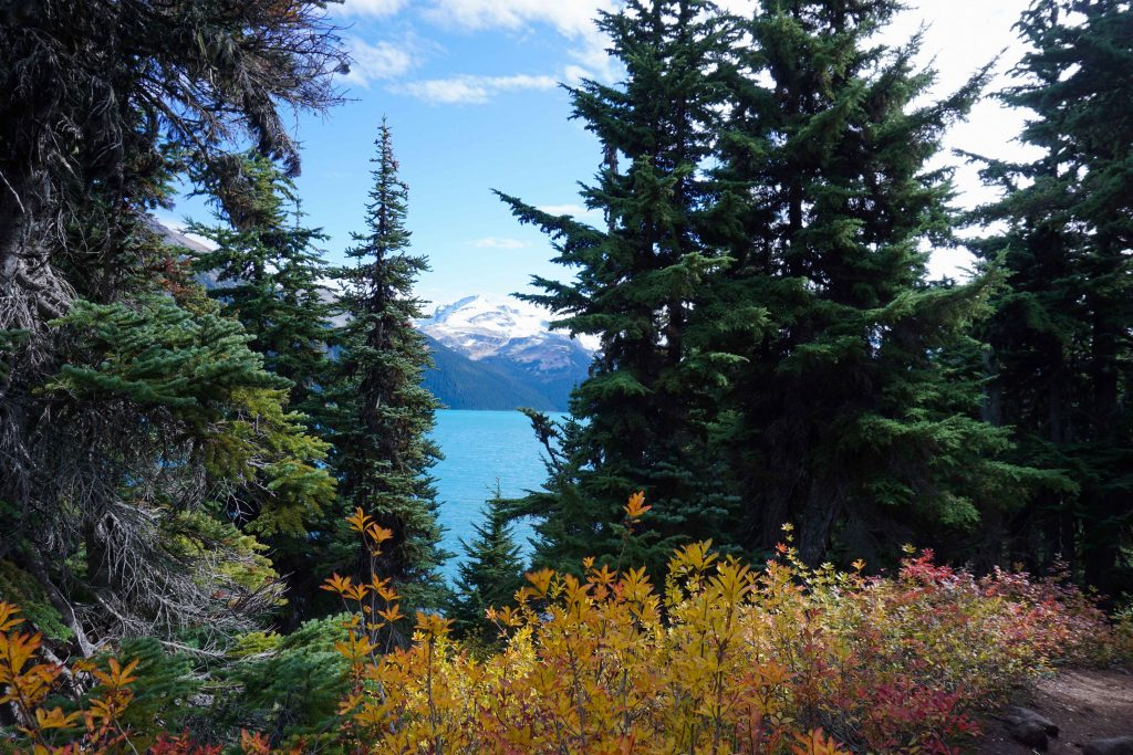 Garibaldi Lake in Autumn