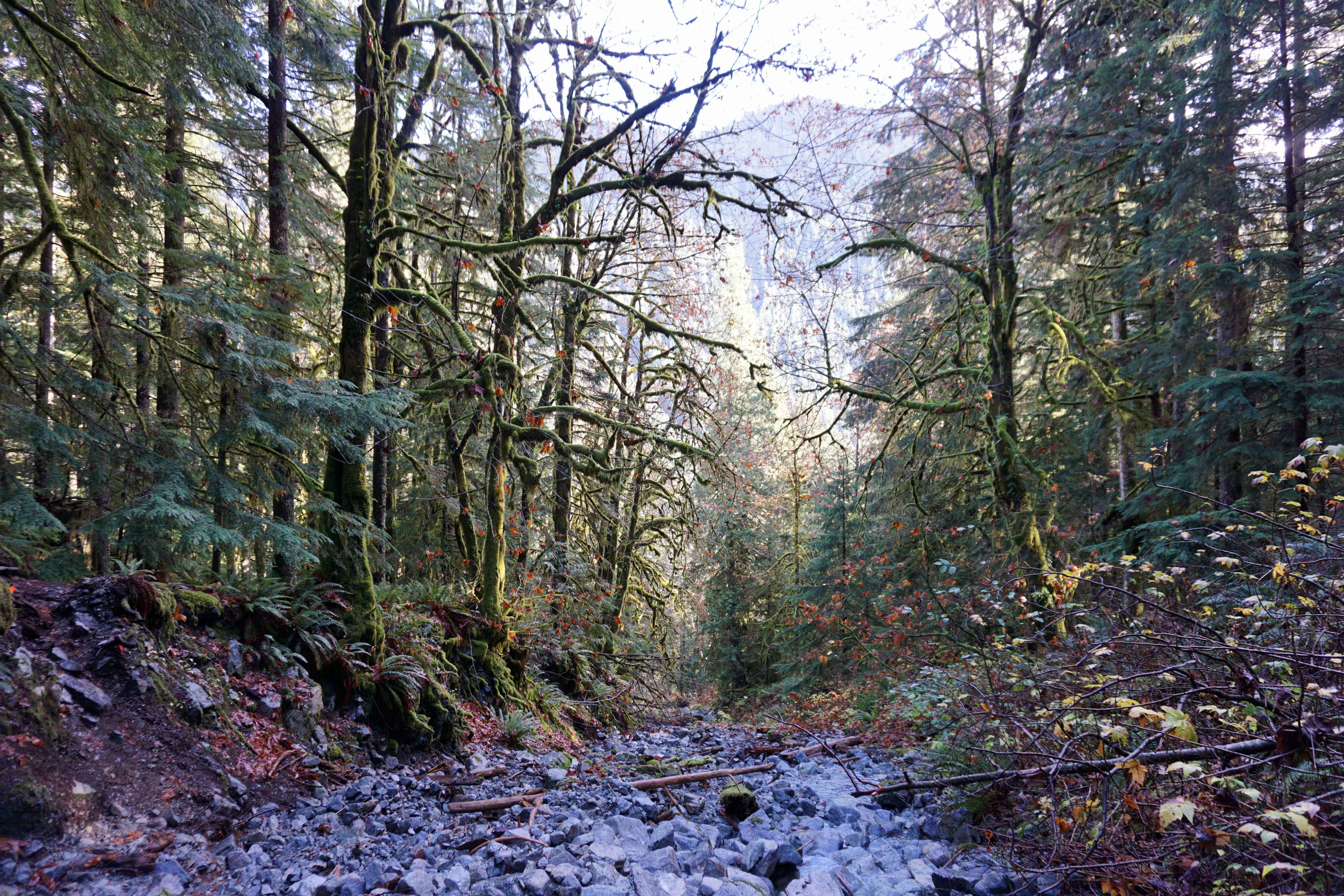 Dry creek on Mount Fromme