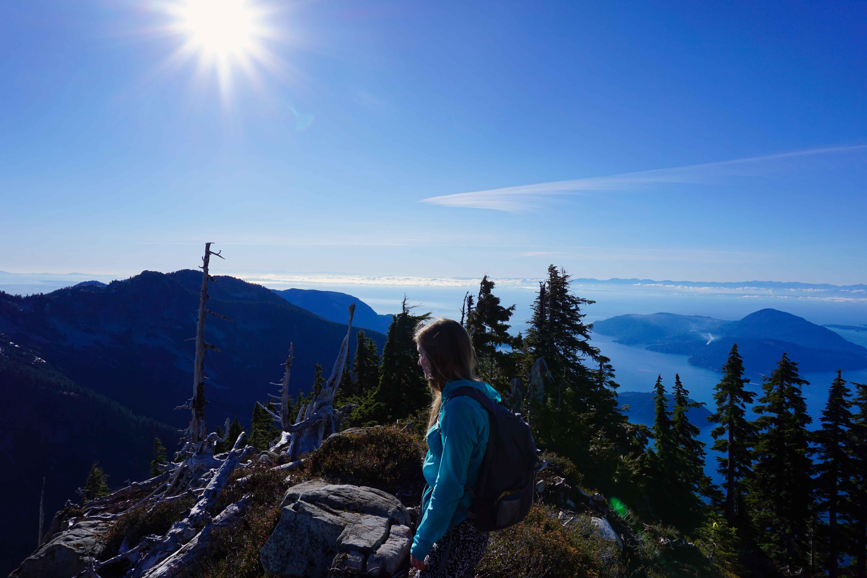 Mount Harvey summit