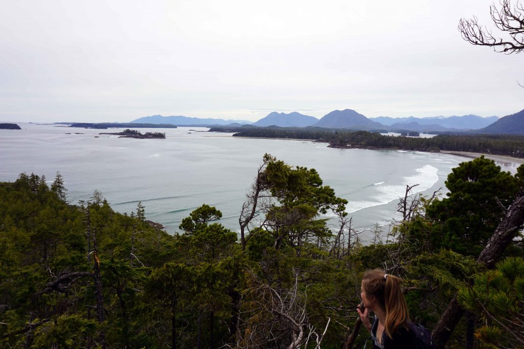 Woman looks across forest and sea from high vantage point