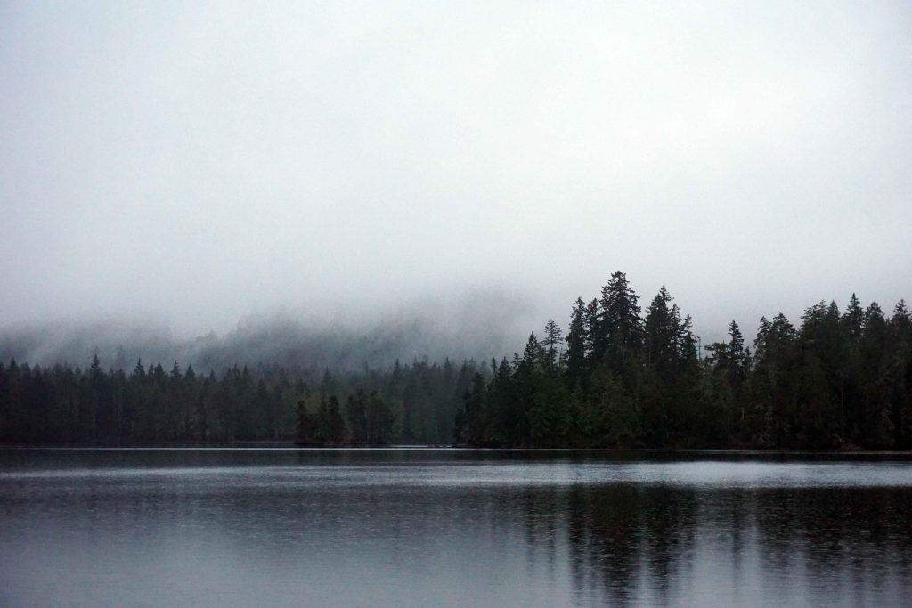 Lake surrounded by trees with low lying cloud