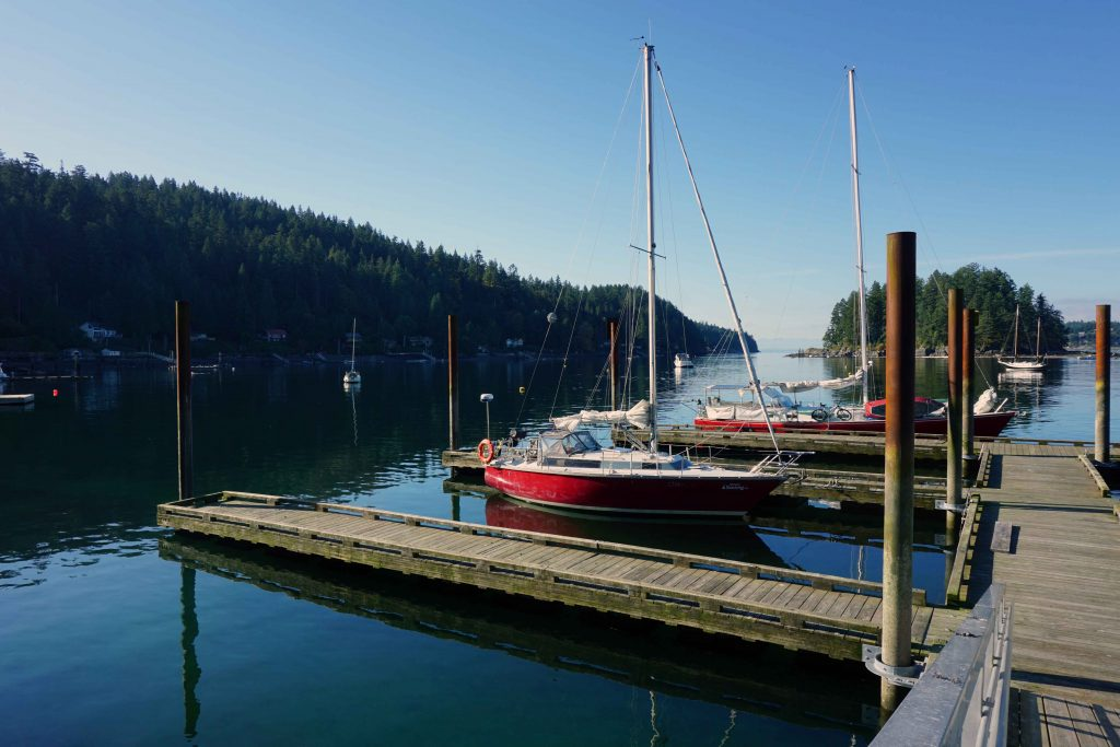 Sailboats moored at a dock