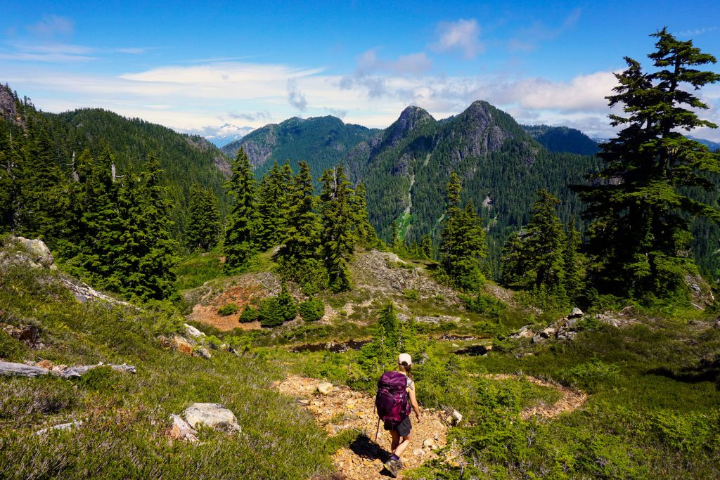 Woman hikes through alpine meadow with purple backpack