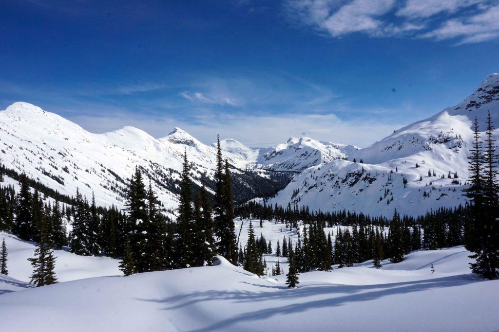 Snow covered backcountry terrain